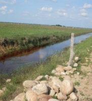 comunicado de prensa desastre ambiental de Paz de Ariporo-16