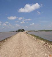 comunicado de prensa desastre ambiental de Paz de Ariporo-19