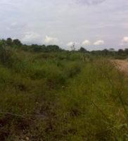 comunicado de prensa desastre ambiental de Paz de Ariporo-24