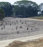 comunicado de prensa desastre ambiental de Paz de Ariporo-4