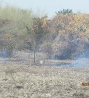 comunicado de prensa desastre ambiental de Paz de Ariporo-9